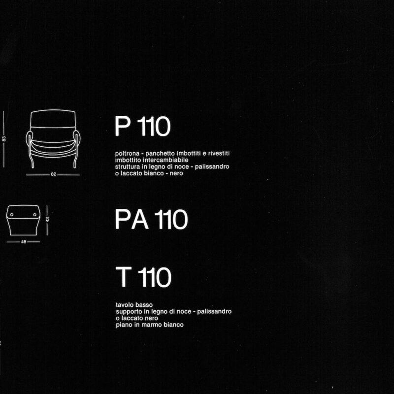 P110 - scheda