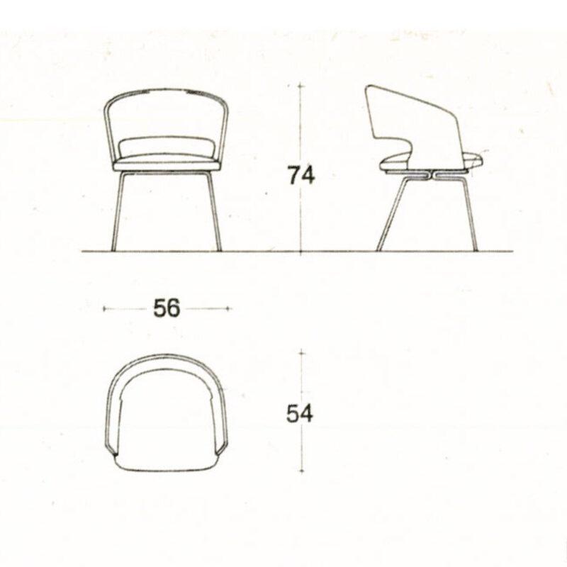 P37 - disegno